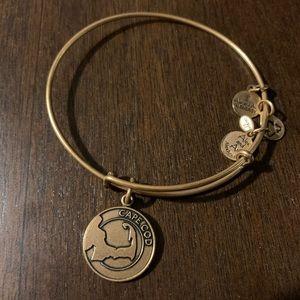 Alex and Ani Cape Cod bracelet